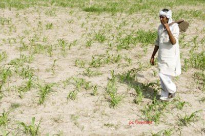 किसानों का हित और उनके लिए योजनायें सरकार की प्राथमिकता रही हैं : सिद्धार्थ नाथ सिंह